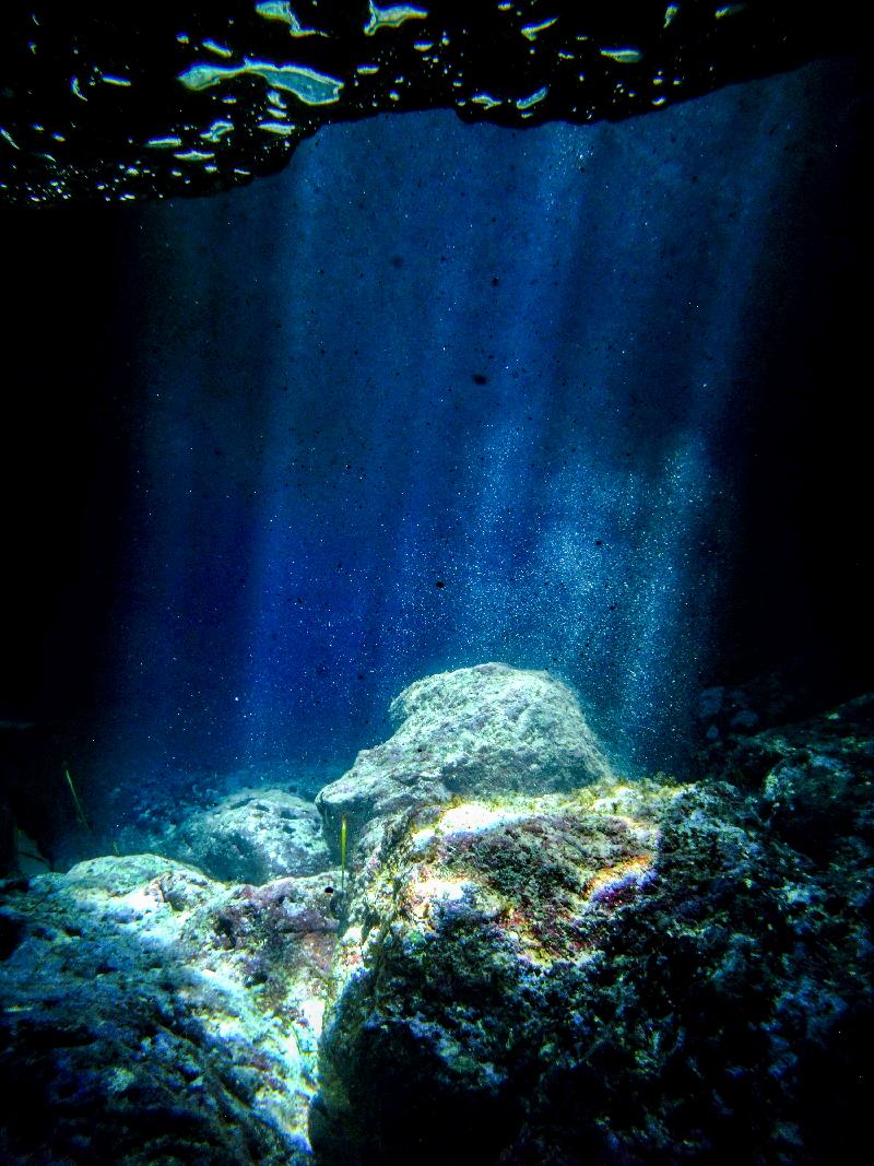 Dive 6 05